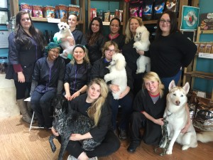 Staff Photo Dec 2015